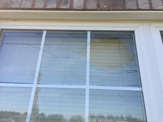 เปิดใจอาบี แฟนสาวของเมย์เวทเธอร์ เหตุปาอิฐใส่กระจกบ้าน